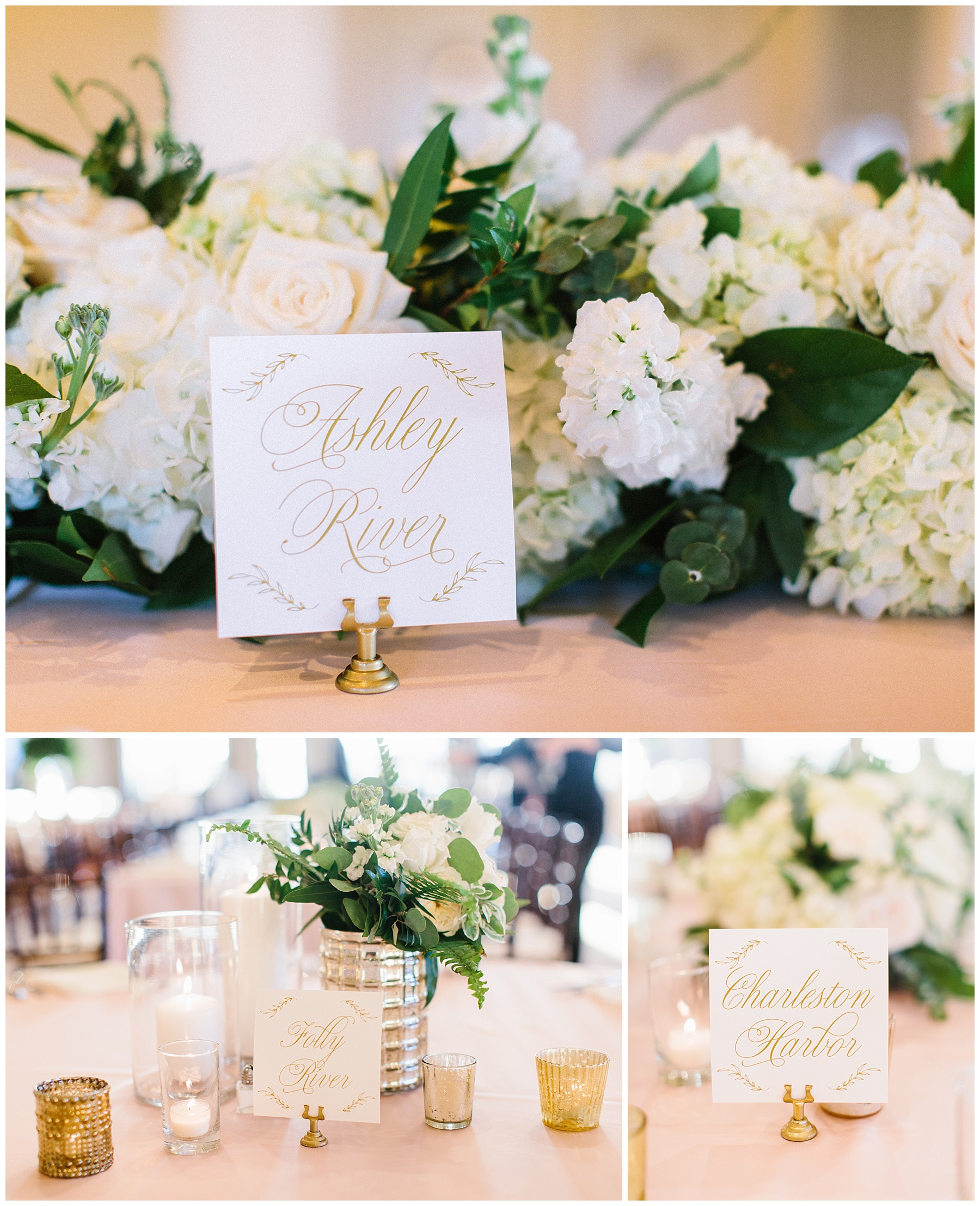 Rachel Red Photography,Charleston,Charleston Wedding Photographer,Destination Wedding Photographer,Photographer,